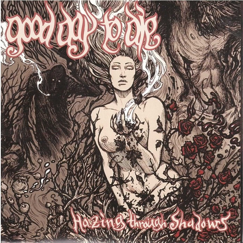 GOOD DAY TO DIE - HAZING THROUGH SHADOWS